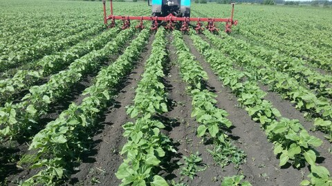 Продам 3000 Га с/х земли и действующее сельхозпредприятие в Пензенской - Фото 2