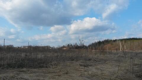 Участок возле Оки в сосновом бору - Фото 5