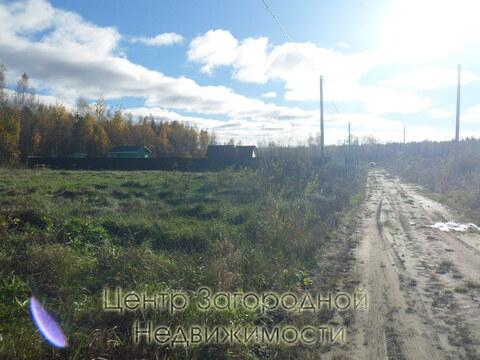 Участок, Горьковское ш, 84 км от МКАД, Головино, в деревне. Прилесной . - Фото 3