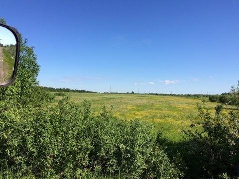 Продаётся сельскохозяйственный имущественный комплекс в с. Горицы - Фото 2