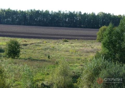 Земельный участок в Тульской области (50га)