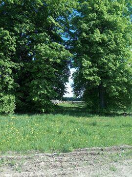 Продажа участка, Богородское, Ивановский район - Фото 1