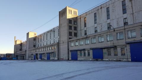 Аренда склада, м. Парнас, 1-й Верхний пер. - Фото 5