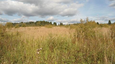 Земельный участок 5,67 Га рядом с деревней Сорокино - Фото 2