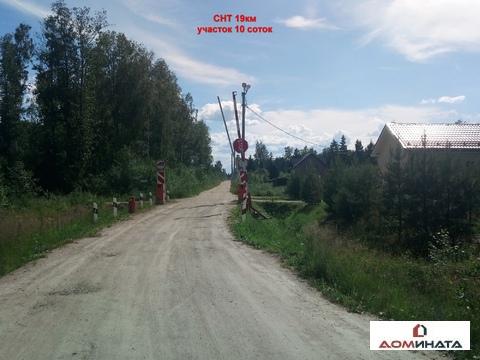 Продам участок 10 соток СНТ 19км Кировский район 45 км от спб - Фото 2