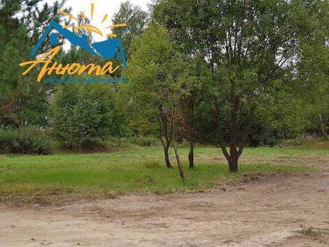Продается земельный участок 10,5 соток в окружении леса в 3 км от Ново - Фото 2