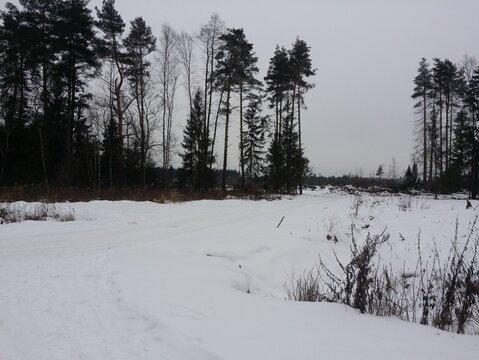 Продается земельный участок, Балашиха, 20 сот - Фото 5