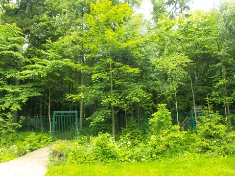 Коттедж в кп Лесная радуга, 160м2, 10 соток, Киевское ш. - Фото 5