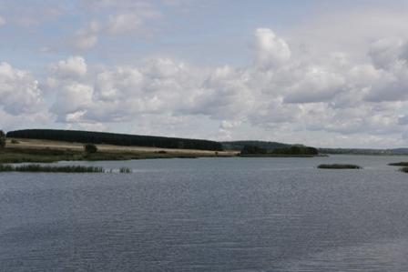 Продаю зем.участок 0.6 га , ИЖС, Богородский р-он, д.Инютино, у озера - Фото 3