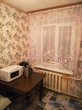 Аренда комнаты, м. Проспект Ветеранов, Ветеранов пр-кт. - Фото 4