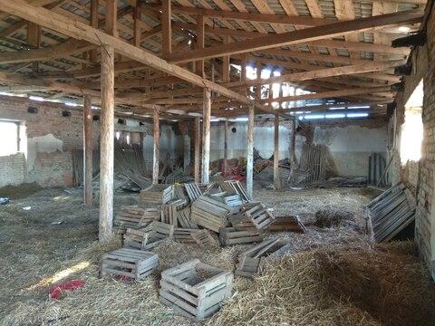 Под склад, хранилище, производство. 1473 кв.м. - Фото 3