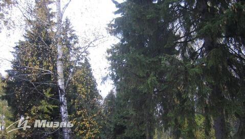 Участок, Правдинский - Фото 3