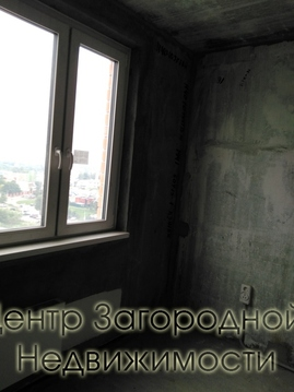 Однокомнатная Квартира Область, шоссе деревня Путилково, Путилковское, . - Фото 2