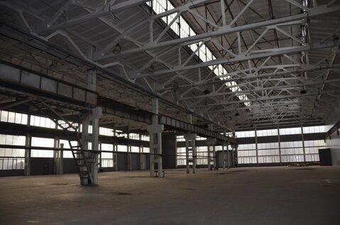Продам производственно-складскую площадку 58 500 кв.м. - Фото 3