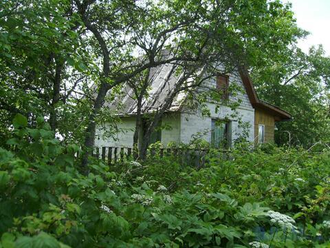 Продам дом в деревне Большое Загорье - Фото 1