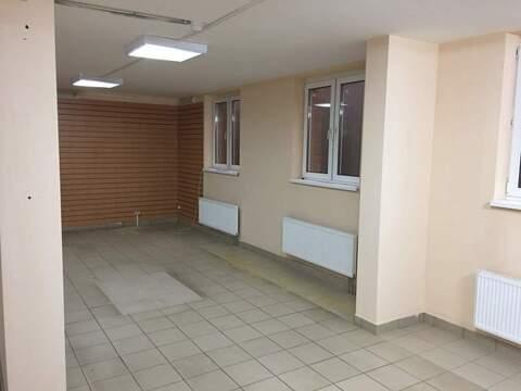 Торговое помещение в аренду - Фото 3