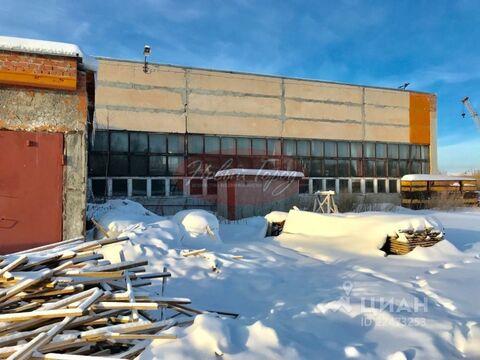 Производственное помещение в Тюменская область, Тюмень Утешево мкр, . - Фото 2