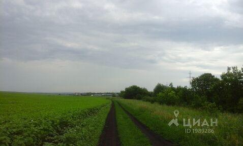 Продажа участка, Белокуриха, Ул. Чехова - Фото 2