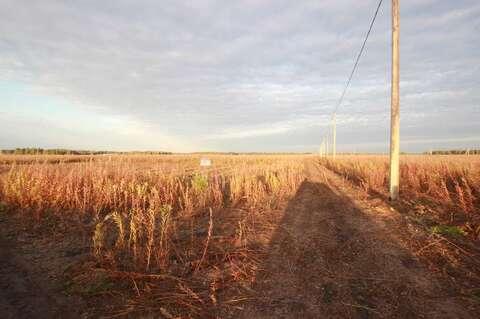 Земельный участок в южном - Фото 1