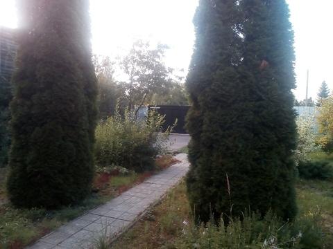 Сдам дам в Химках Фирсановка - Фото 5