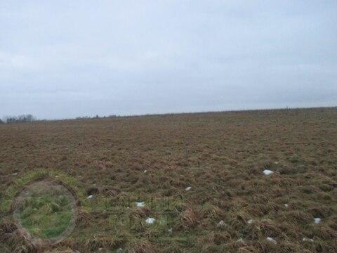 Продажа участка, Гурьевск, Гурьевский район, Заозерье - Фото 3
