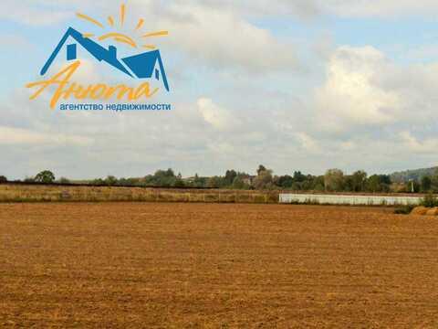 Участок 4 га в деревне Федорино для сельскохозяйственного производства - Фото 1
