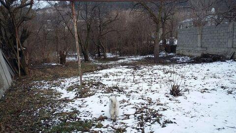 Продажа участка, Кисловодск, Ул. Катыхина - Фото 2