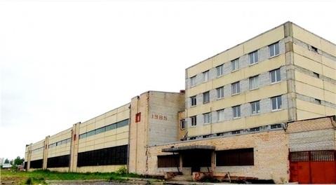 Продажа склада, м. Комендантский Проспект, Шуваловский пр-кт. - Фото 5