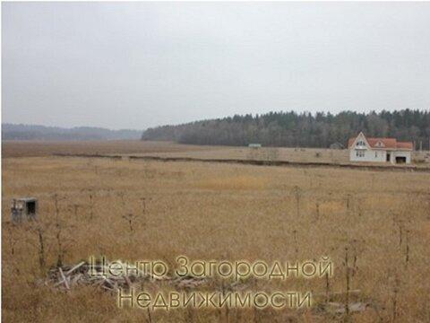 Участок, Можайское ш, 65 км от МКАД, Васильевское д. (Рузский р-н). . - Фото 1