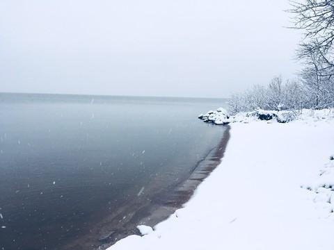 Участок на первой линии Чудского озера - Фото 2