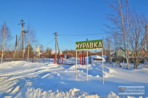 "Участок 12 соток в пск ""Муравка"" в Шаховском районе - Фото 1"