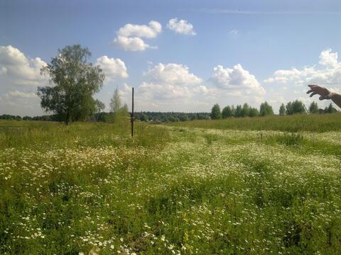 Продается земельный участок, с.Старогромово - Фото 1