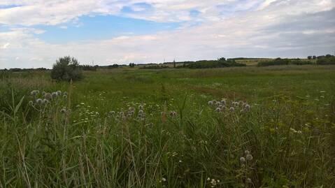 Участок сельхозназначения в Верхнемамонском районе - Фото 4