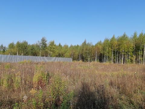 Большое Петровское д, участок 15 соток, знп для ИЖС, свет подведен. - Фото 1