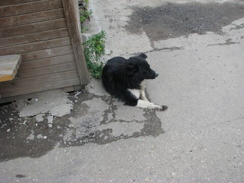 Сдается гараж в Очаково - Фото 4