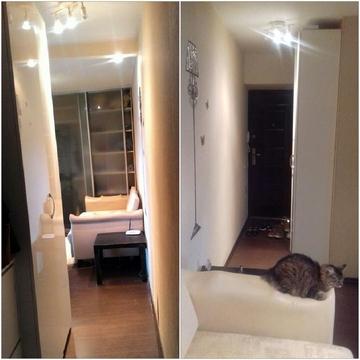 1 комнатная квартира с ремонтом - Фото 3