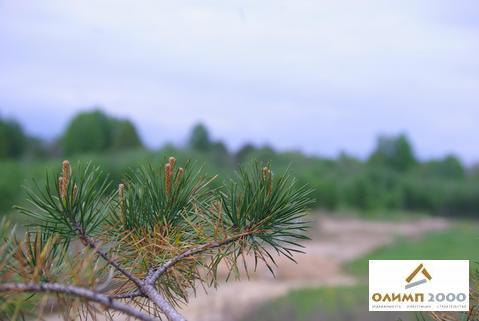 Тосно, Шапки, ИЖС, собственность, озеро Долгое - 200 метров - Фото 4