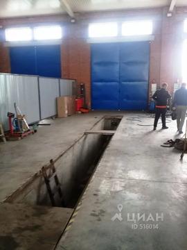 Производственное помещение в Ростовская область, Мясниковский район, . - Фото 2