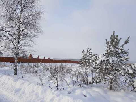 Участок ИЖС У соснового леса - Фото 2