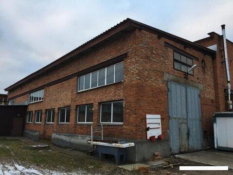 Сдается склад, Руза г, 264м2 - Фото 2