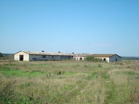 Продам коровник в селе Шелемисс - Фото 1