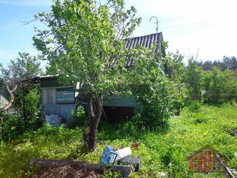 Продажа дома, Кебь, Псковский район - Фото 3