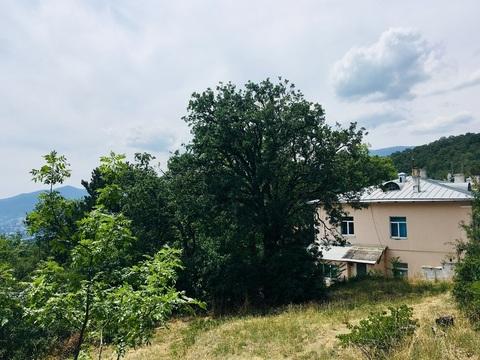 Участок на границе Массандровского дворца - Фото 4