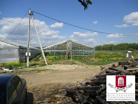 Аренда участка 140 соток, сельхозназначение (СНТ, ДНП) - Фото 3