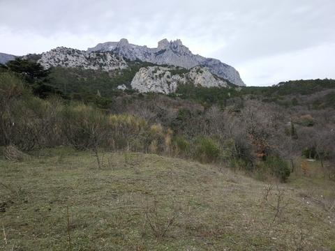 Продам лучший земельный участок в Крыму! - Фото 5
