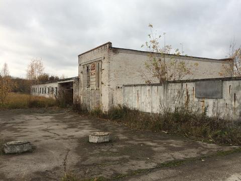 Продажа имущественного комплекса - птицефабрика: 77,1 га - Фото 5