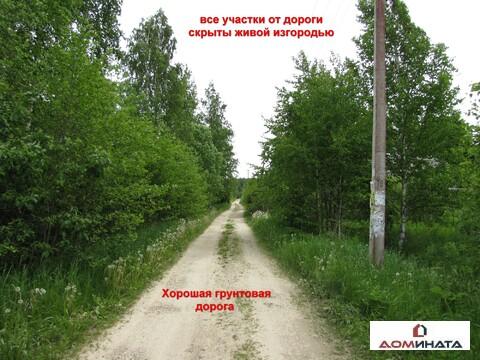 Продам участок 6 соток Ленинградская область Гатчинский район Чаша - Фото 3