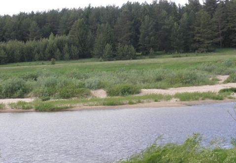 Земельный участок у воды 26 соток рядом с д. Быково Кимрского р-на - Фото 5