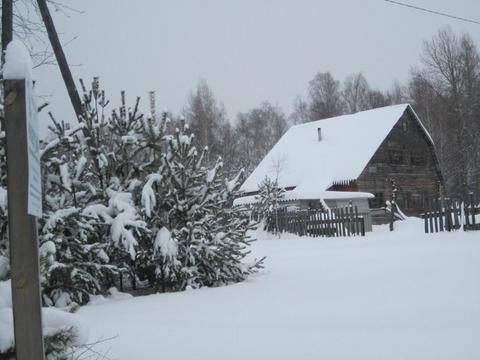 Большой дом на границе Мещерского национального парка - Фото 3
