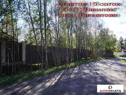 Продается участок 15 соток в пос. Васкелово - Фото 3